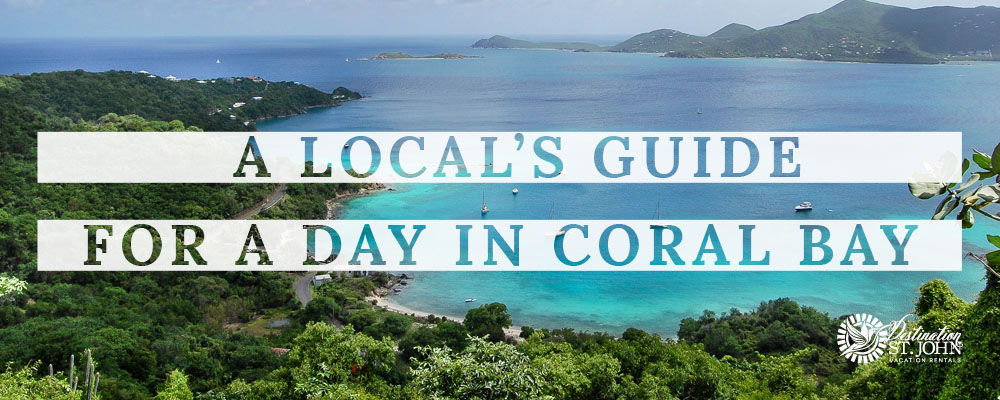 Coral Bay, St. John USVI, Virgin Islands, Where to Stay St. John, Skinny Leg's