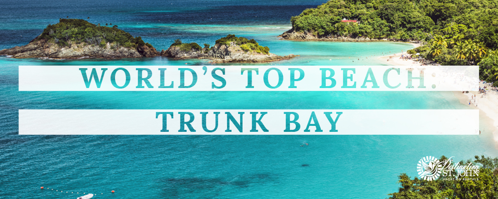 Trunk Bay, Where to Stay St. John, Best Beaches in the World, Trunk Bay St. John